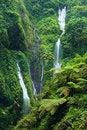 Free Madakaripura Waterfall Stock Photography - 31177922