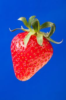 Free Strawberry Single Royalty Free Stock Photography - 31171327