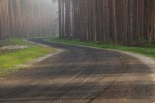Free Forest Road. Royalty Free Stock Images - 31175099