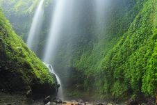Madakaripura Waterfall – Deep Forest Waterfall