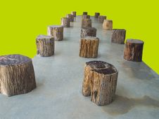 Wood Stumps Royalty Free Stock Images