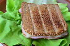 Integral Toast, Ham And Cheese Sandwich Royalty Free Stock Images