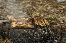 Free Barbeque Stock Photos - 31195773