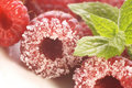 Free Sweet Raspberries And Mint Stock Images - 3128324