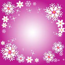 Free Flower Frame Royalty Free Stock Image - 3120526