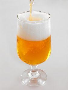 Free Beer Stock Photos - 3123003