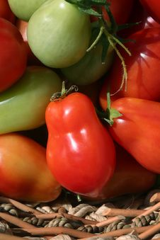 Roma Tomatoes In A Basket Royalty Free Stock Images