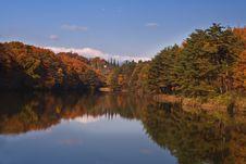 Autumn Splendour Royalty Free Stock Photos