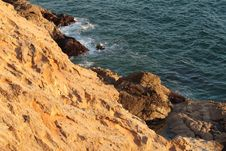 Free Sea Shore Royalty Free Stock Photos - 3126878