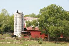 Free Rural Barn Tennessee Stock Photography - 3127142
