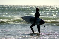 Free Surfer In The Shore Stock Images - 3127924