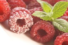 Free Sweet Raspberries And Mint Royalty Free Stock Photos - 3128248