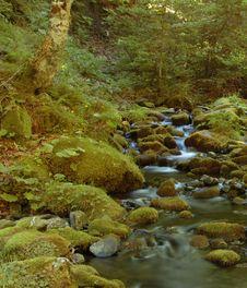 Free Ansabere Mountain Stream Royalty Free Stock Photos - 3128648