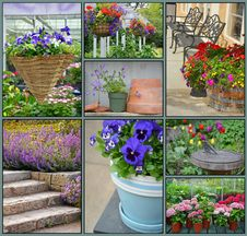 Free Floral Garden Collage Royalty Free Stock Photos - 31212258