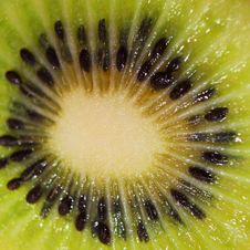 Free Kiwi Stock Photos - 31217143