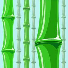 Free Bamboo Pattern Stock Photos - 31223503