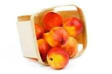 Free Nectarines Royalty Free Stock Photography - 31233347