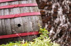 Free Wine Barrel Royalty Free Stock Photo - 31236585