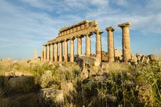 Free Acropolis Of Selinunte, Sicily Stock Photography - 31239702