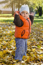 Free Child In Autumn Park Stock Images - 31246314