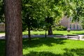 Free Park With Bench And Road Royalty Free Stock Photo - 31249775