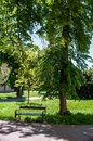 Free Park With Bench And Road Stock Photos - 31249793