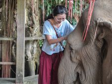 Free Happy Female Tourist Playing With Elephant Stock Photos - 31244263