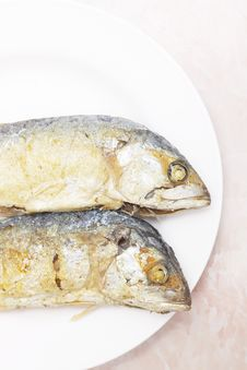 Free Fried Mackerel Stock Images - 31245454