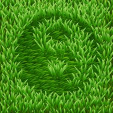 Free Ying-Yang Symbol On Green Grass Royalty Free Stock Photo - 31260115