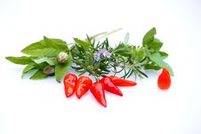 Free Chilis And Herbs Mix Royalty Free Stock Photos - 31270128