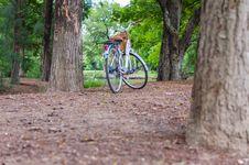 Free White Bicycle With Basket Stock Photos - 31279093