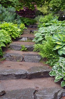 Free Stone Steps In Botanical Garden Stock Photo - 31279150