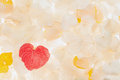 Free Dried Leaf Of Heart Shape Stock Photos - 31284673