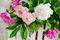 Free Beautiful Peonies Closeup Royalty Free Stock Images - 31289669