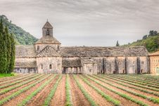 Free Abbey Of Senanque, France Stock Images - 31295184
