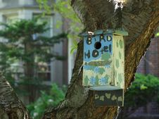 Free The Bird Hotel Stock Images - 31299414