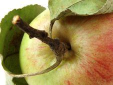 Free Apple Fragment Royalty Free Stock Photo - 3132645