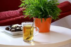Have Some Tea. Royalty Free Stock Photography