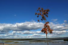 The Northern Lake Royalty Free Stock Photos