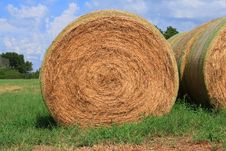 Free Rolls Of Hay Stock Photography - 3133492