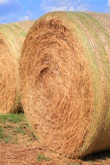 Free Giant Bale Of Hay Stock Photos - 3133833