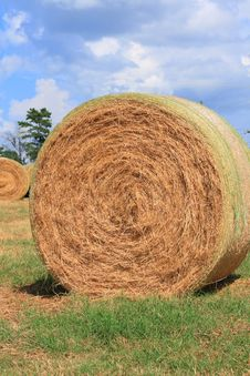 Free Round Bale Of Hay Royalty Free Stock Image - 3133836
