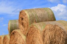 Free Rolls Of Hay Royalty Free Stock Photography - 3133917
