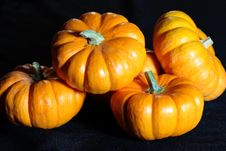 Free Vivid Pumpkins Stock Image - 3134271