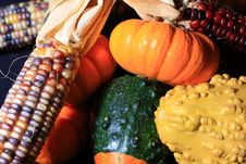 Autumn Harvest Royalty Free Stock Photography