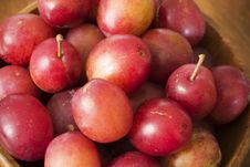 Free Fresh Plums 2 Royalty Free Stock Photo - 3134395