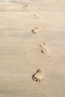 Free Footprints In The Sand Royalty Free Stock Image - 3134596