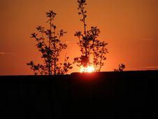 Free Sunset Royalty Free Stock Photo - 3135535