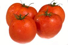 Red Juicy Tomatoes Stock Photos