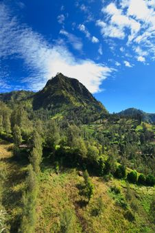 Summer Landscape In High Mountains And The Blue Sky Royalty Free Stock Photography